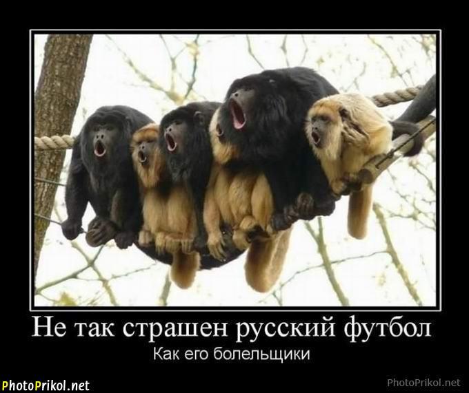 изображение: Не так страшен русский футбол, как его болельщики #Прикол
