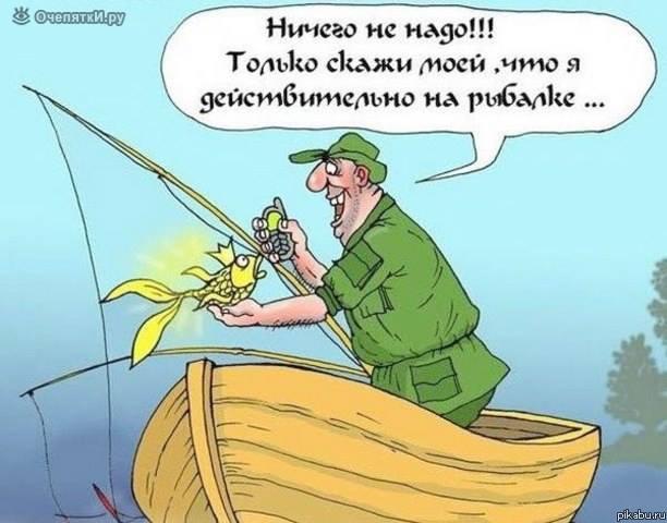 изображение: Ничего не надо! Только скажи моей, что я действительно на рыбалке... #Прикол