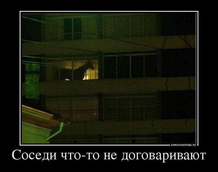 изображение: Соседи что-то недоговаривают #Прикол
