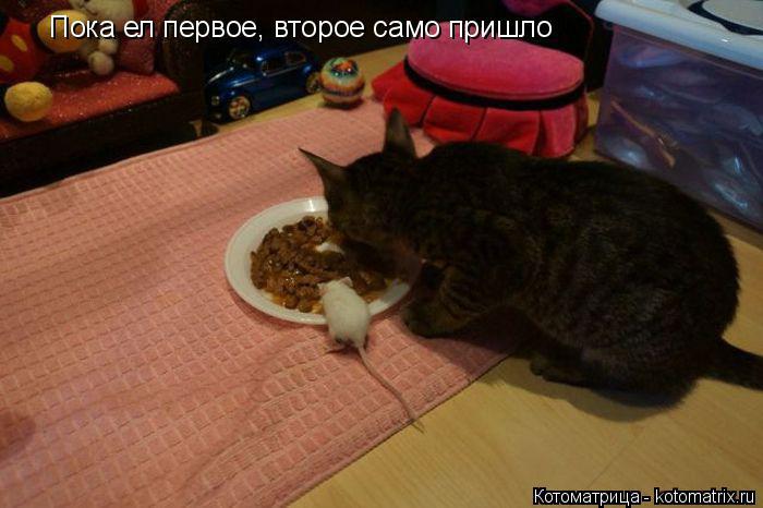 Пока ел первое, второе само пришло... | #прикол