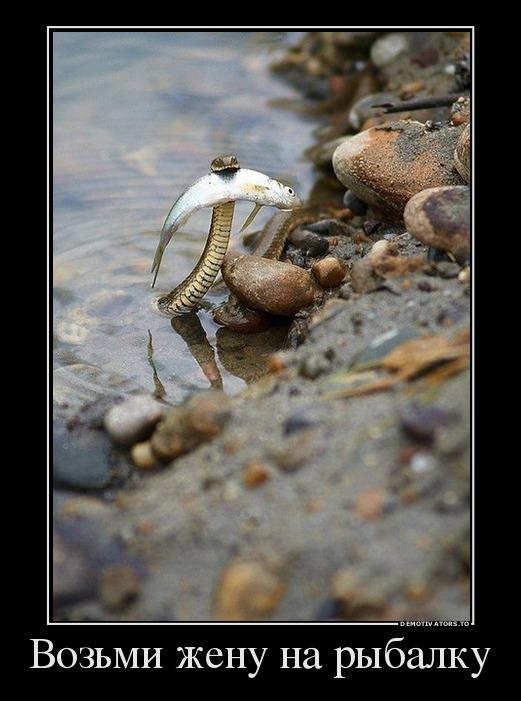 изображение: Возьми жену на рыбалку #Прикол