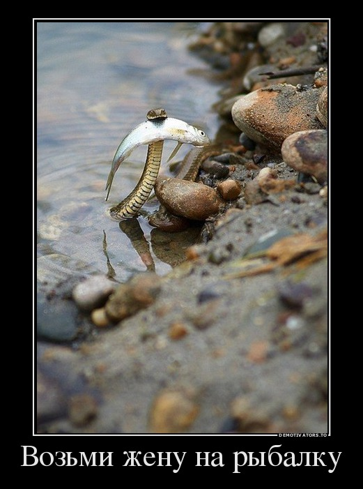 Возьми жену на рыбалку | #прикол