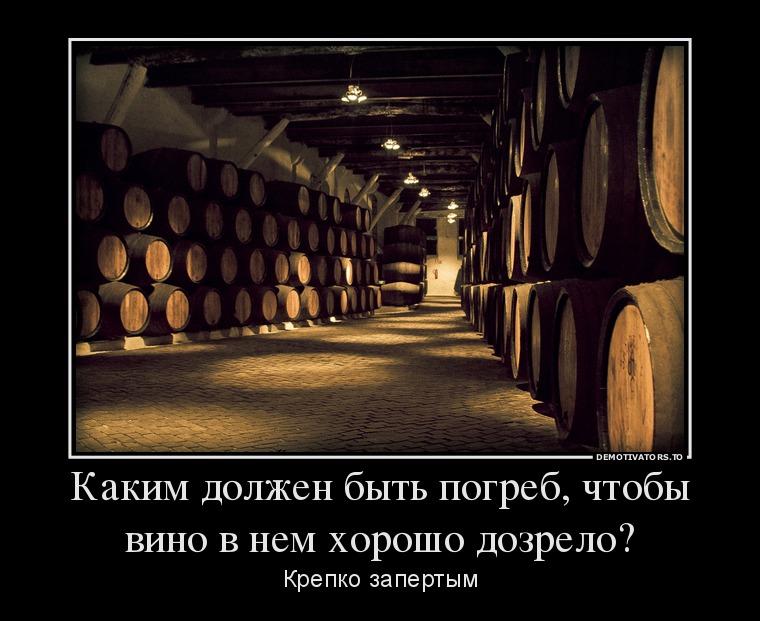изображение: Каким должен быть погреб, чтобы вино в нем хорошо дозрело? Крепко запертым #Прикол