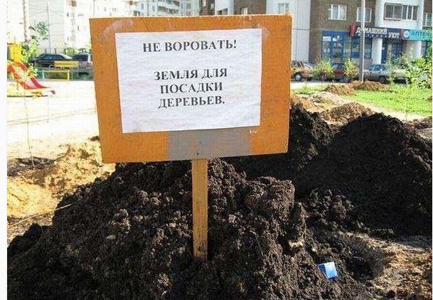 изображение: Не воровать. Земля для посадки деревьев #Смешные объявления