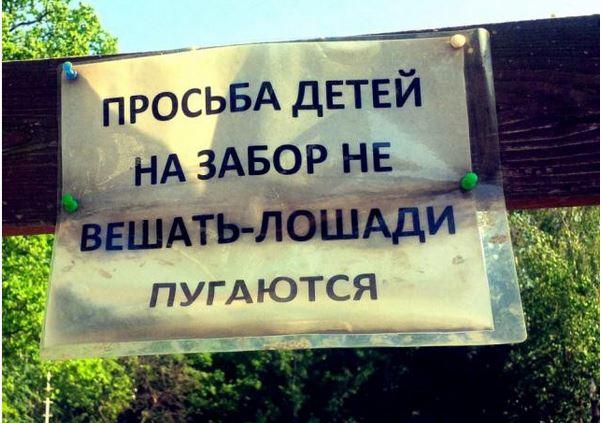 изображение: Просьба детей на забор не вешать -лошади пугаются #Смешные объявления