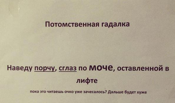 изображение: Потомственная гадалка. Наведу порчу, сглаз по моче, оставленной в лифте. Пока это читаешь, очко уже зачесалось? Дальше будет хуже #Смешные объявления
