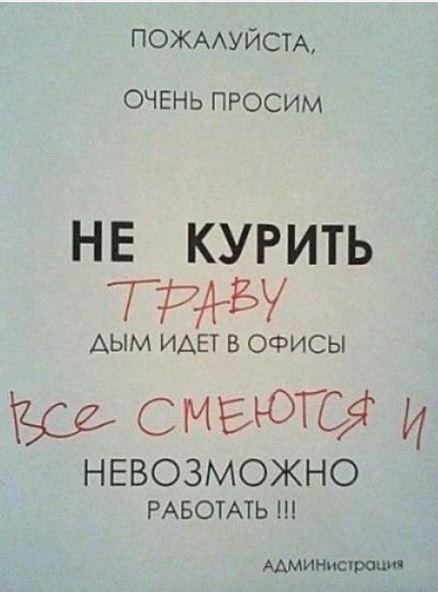 изображение: Пожалуйста, очень просим не курить траву - дым идет в офисы. Все смеются и невозможно работать! Администрация #Смешные объявления