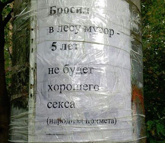 изображение: Бросил в лесу мусор - 5 лет не будет хорошего секса (народная примета). #Смешные объявления