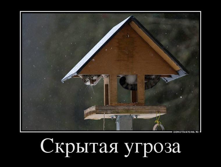 изображение: Скрытая угроза #Прикол