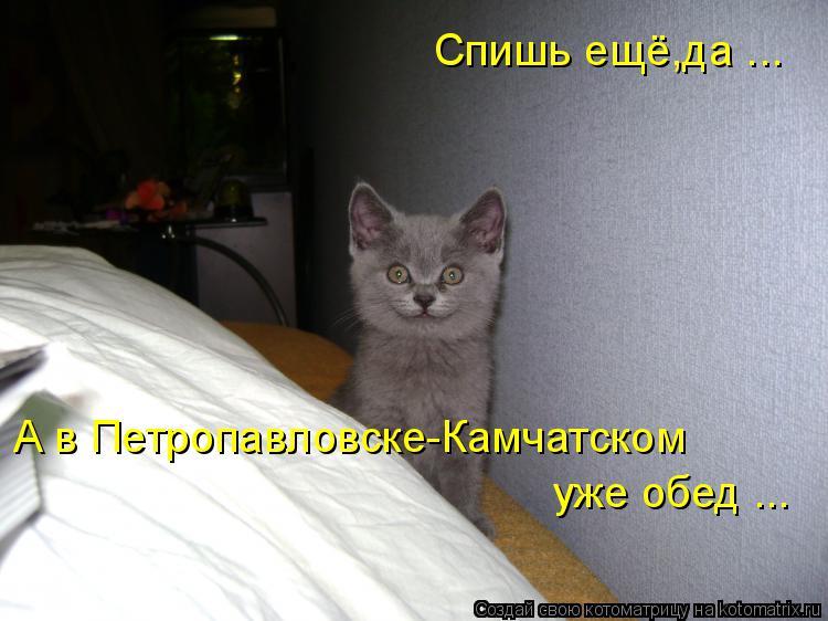 Спишь ещё,да ... А в Петропавловске-Камчатском уже обед ...... | #прикол