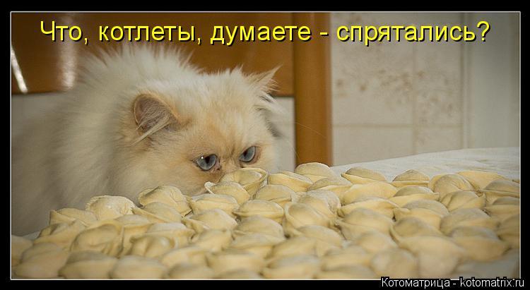 изображение: Что, котлеты, думаете - спрятались?... #Котоматрицы