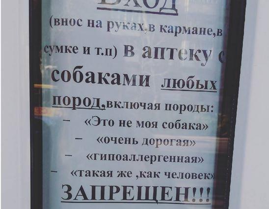 Вход в аптеку с собаками любых пород запрещен | #прикол