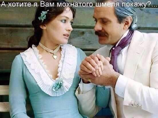 изображение: А хотите я Вам мохнатого шмеля покажу? #Прикол