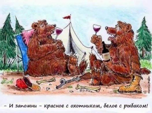 - И запомни: красное - с охотником, белое - с рыбаком! | #прикол