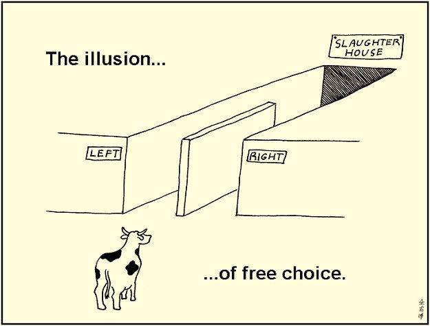изображение: The Illusion of free choice. Иллюзия свободного выбора #Прикол
