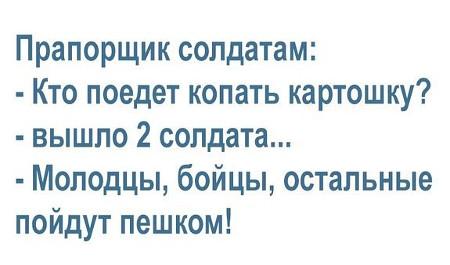 изображение: Армия: Прапорщик солдатам: - Кто поедет копать картошку? Вышло 2 солдата. - Молодцы, бойцы, остальные пойдут пешком! #Прикол