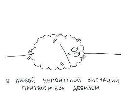 изображение: В любой непонятной ситуации притворитесь дебилом #Прикол