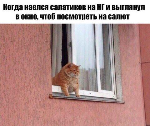 Когда наелся салатиков на Новый год и выглянул в окно посмотреть салют | #прикол