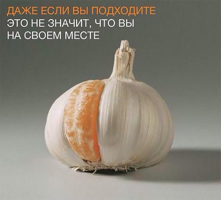 изображение: Даже если подходите, это не значит, что на своем месте #Прикол