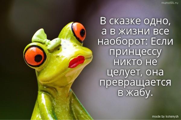 изображение: В сказке одно, а в жизни все наоборот: Если принцессу никто не целует, она превращается в жабу. #Прикол