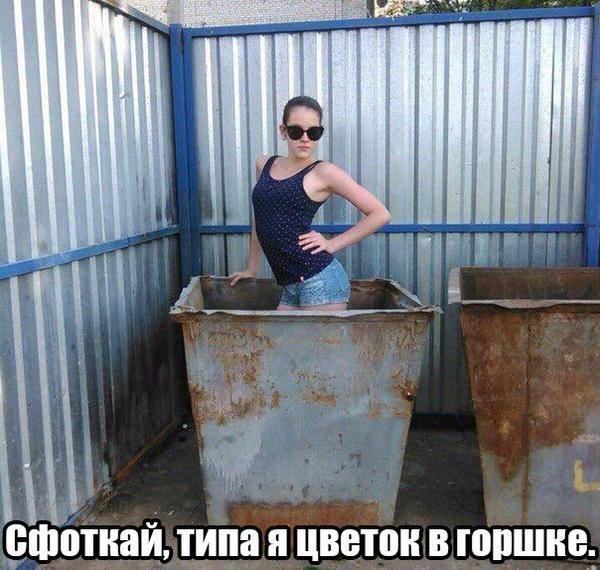 изображение: Сфоткай, типа я цветок в горшке. #Прикол