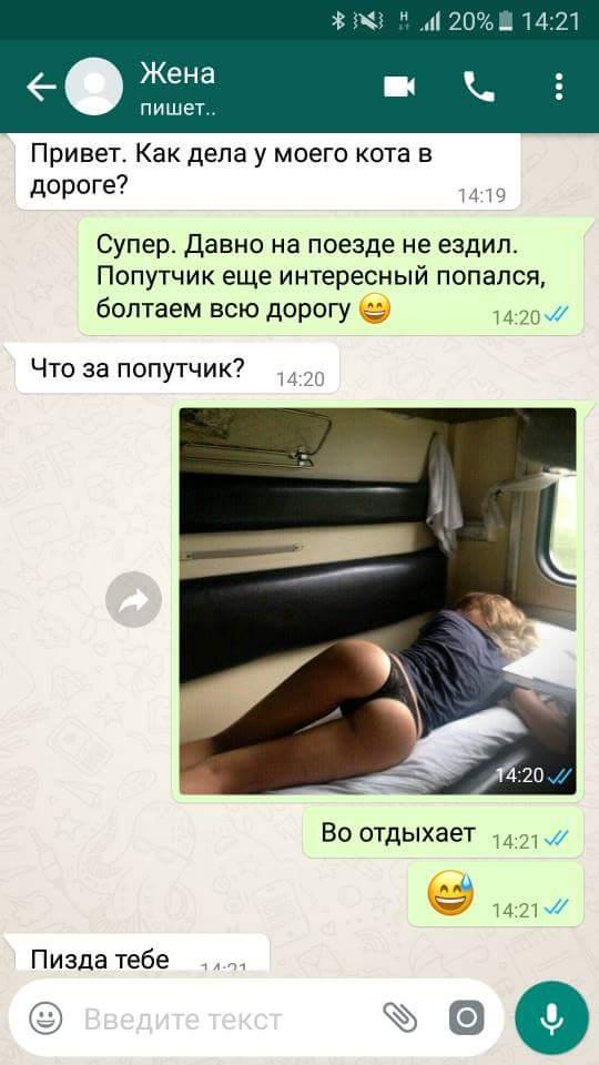 изображение: Жена пишет: Привет, как дела у моего кота в дороге? - Супер, давно на поезде не ездил.. #CМС приколы
