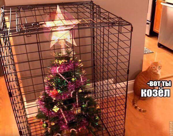 изображение: Как защитить елку от кота #Котоматрицы