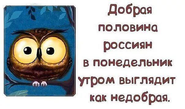 Добрая половина россиян в понедельник утром выглядит как недобрая | #прикол