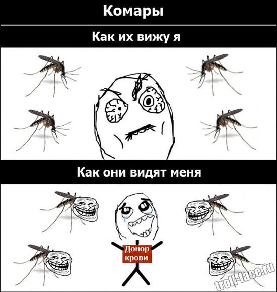 Комары: Как их вижу я. Как они видят меня - донор крови | #прикол