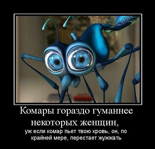 изображение: Комары гораздо гуманнее некоторых женщин, уж если комар пьет твою кровь, он, по крайней мере, перестает жужжать #Прикол