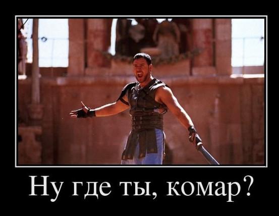 изображение: По мотивам фильма 'Гладиатор': Ну где ты, комар?! #Прикол