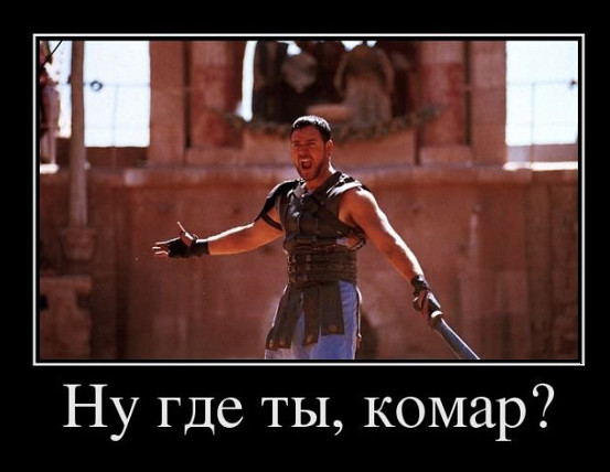 "По мотивам фильма ""Гладиатор"": Ну где ты, комар?! | #прикол"