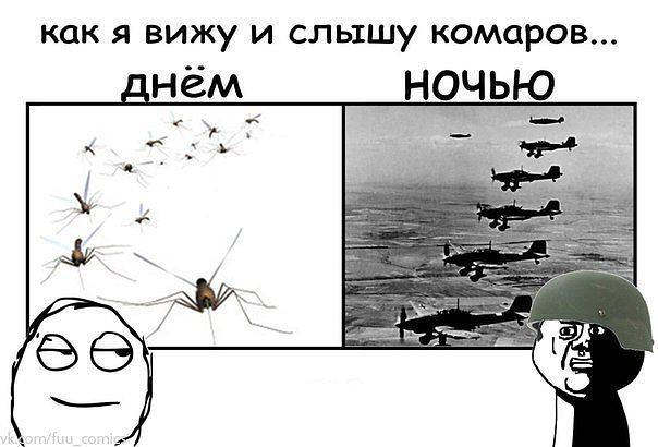 Как я слышу комаров днём и ночью | #прикол