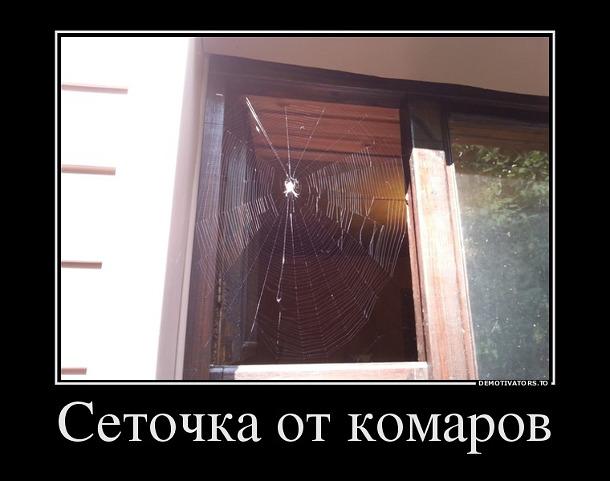 изображение: Самая эффективная защита от комаров - оригинальная сетка на ваше окно #Прикол