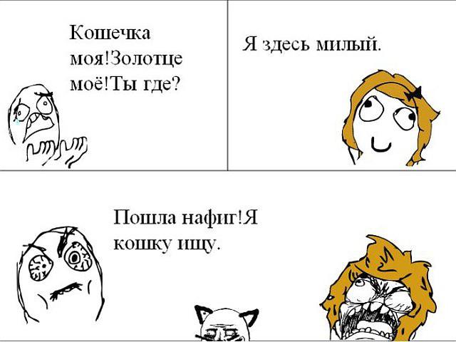 изображение: - Кошечка моя! Золотце моё! Ты где? - Я здесь, милый - Пошла нафиг! Я кошку ищу #Прикол