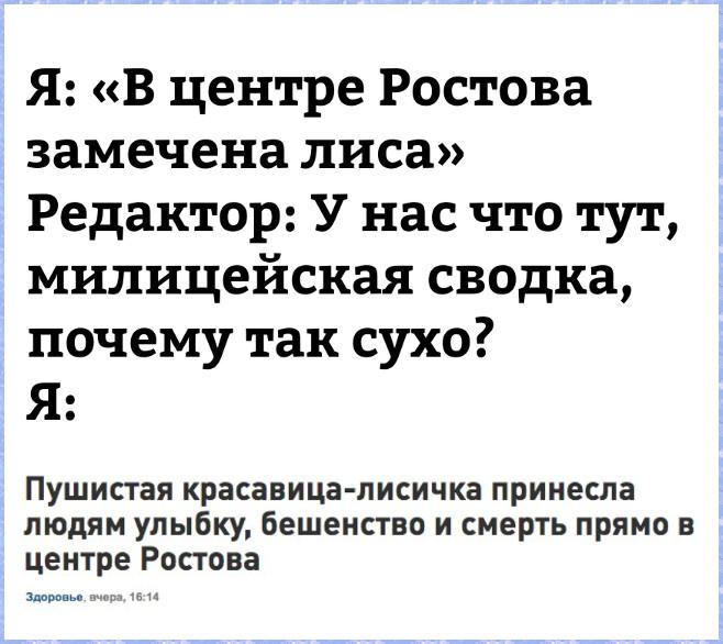 изображение: Я: 'В центре Ростова замечена лиса'. Редактор: - У нас что тут, милицейская сводка, почему так сухо? Я: 'Пушистая красавица-лисичка принесла людям улыбку, бешенство и смерть прямо в центре Ростова' #Прикол