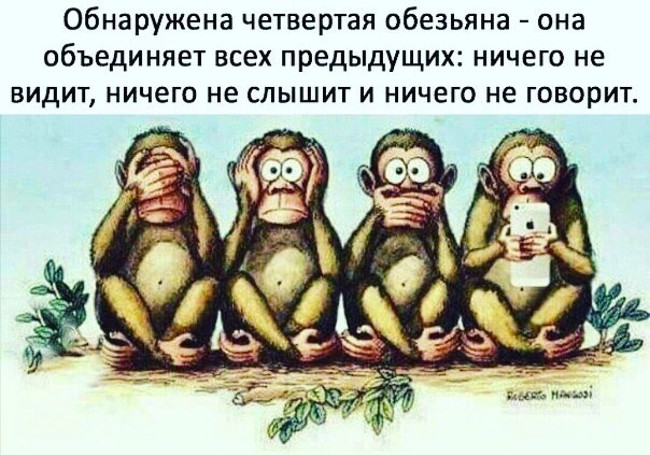 Обнаружена четвертая обезьяна - она объединяет всех предыдущих: ничего не видит, ничего не слышит и ничего не говорит. | #прикол