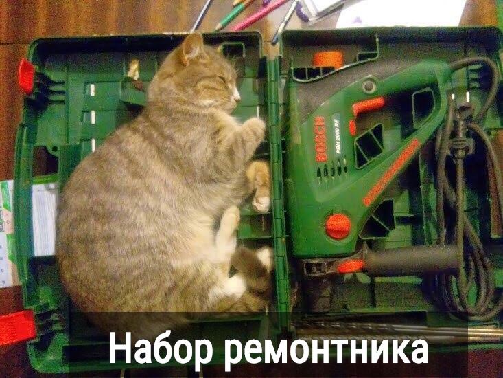 изображение: Набор ремонтника #Котоматрицы