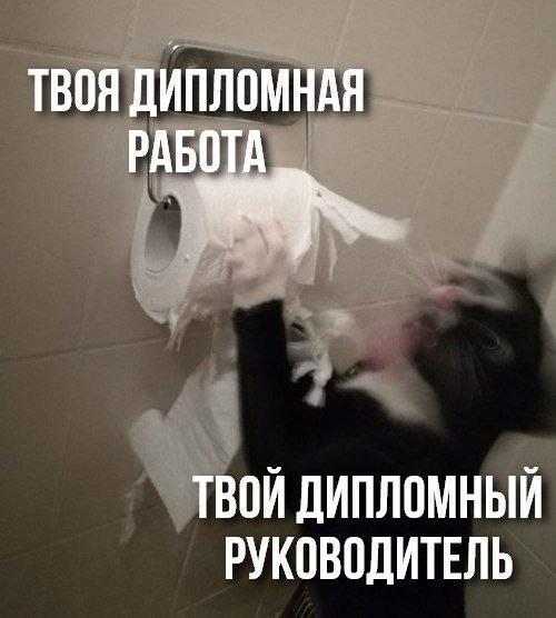 изображение: Твоя дипломная работа и твой дипломный руководитель #Котоматрицы