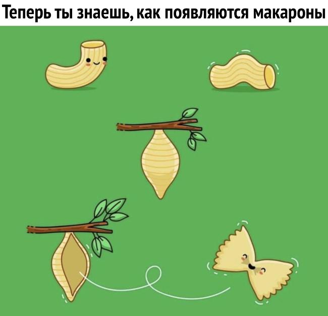 изображение: Теперь ты знаешь, как появляются макароны #Прикол