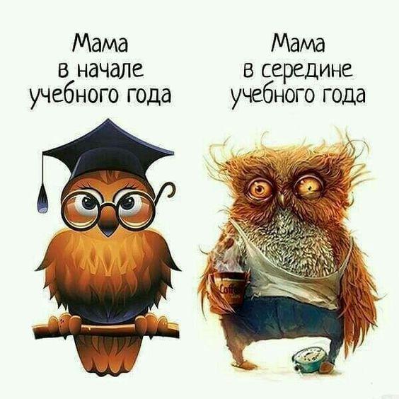 изображение: Мама в начале учебного года. Мама в середине учебного года. #Прикол