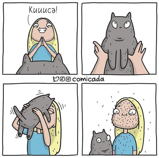 изображение: Кошачья шерсть везде #Прикол