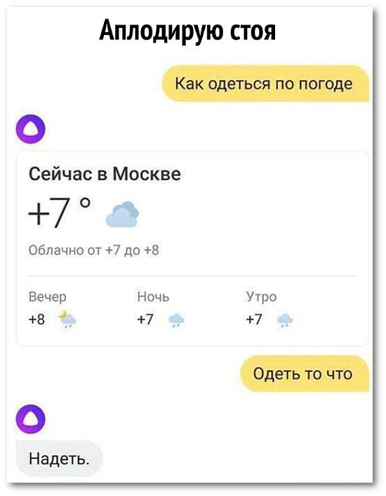 изображение: Аплодирую стоя. Диалог с Алисой: - Как одеться по погоде? - Сейчас в Москве +7, облачно. - Одеть то что? - Надеть. #Прикол