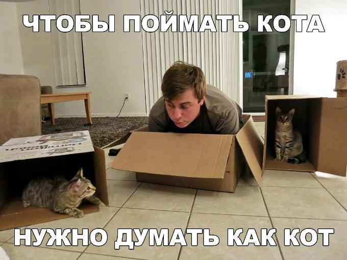 изображение: Чтобы поймать кота, нужно думать как кот #Котоматрицы