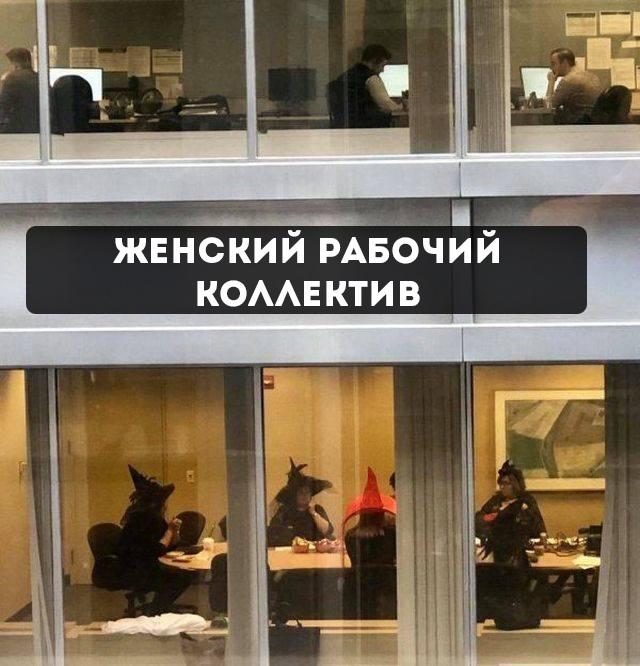 изображение: Женский рабочий коллектив #Прикол