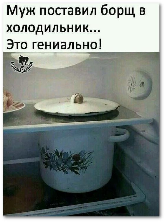 изображение: Муж поставил борщ в холодильник #Прикол