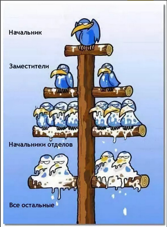 изображение: Иерархия на работе: начальник, заместители, начальники отделов, все остальные сотрудники #Прикол