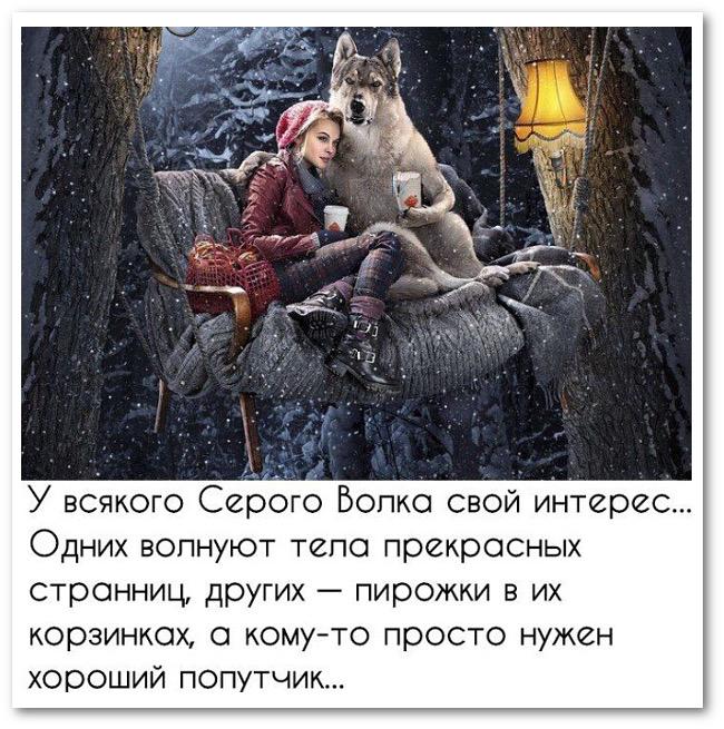 изображение: У всякого Серого волка свой интерес... Одних волнуют тела прекрасных странниц, других - пирожки в их корзинках, а кому-то просто нужен хороший попутчик #Прикол
