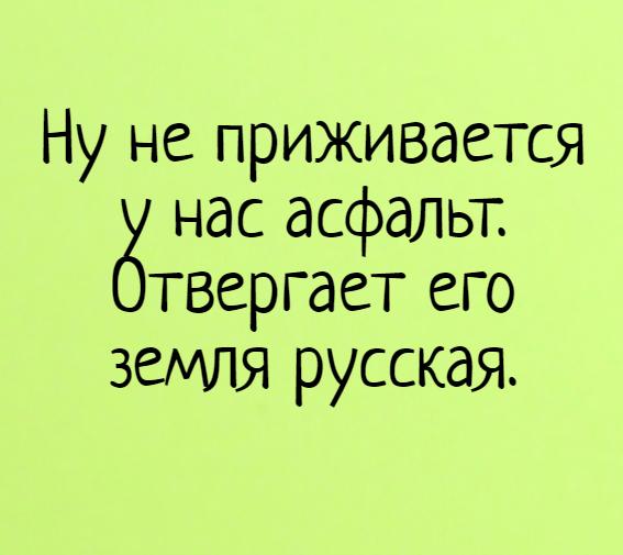 изображение: Ну не приживается у нас асфальт. Отвергает его земля русская. #Прикол