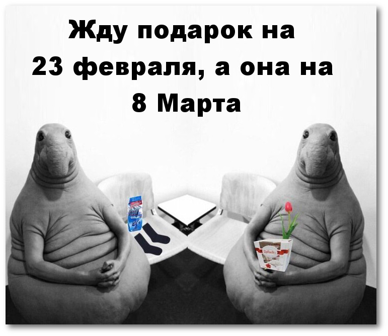 изображение: Жду подарок на 23 февраля, а она на 8 Марта #Прикол